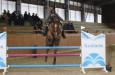 Miloslav Vítek kraloval v Kralovicích  na Zimním poháru České jezdecké federace v parkurovém skákání